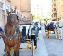 La 'agonía' de los coches de caballos en el centro